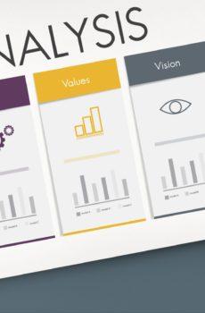 Startup Evaluation - Israeli Startup Due Diligence (Analysis): Technology, Skills, Values, Vision, Goals
